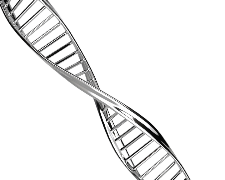 Image of DNA strand